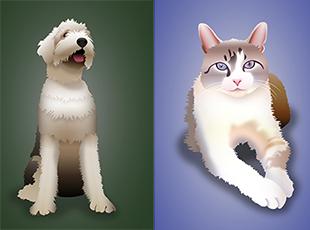 Pet Project sample art Danielle Rueger