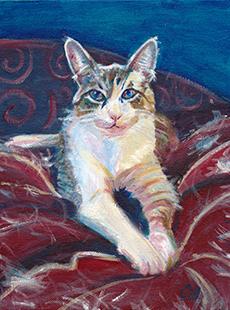 Carolyn Merklein sample cat portrait