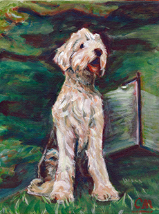 Carolyn Merklein sample dog portrait