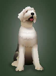 rueger_pp-dog230x310v