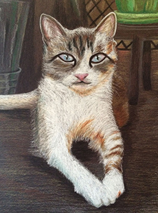 Pet Project sample art Jessica Miroglotta